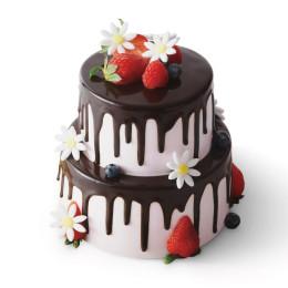 Праздничный торт в два яруса с клубникой, голубикой и ромашками