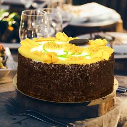 Торт Недотрога
