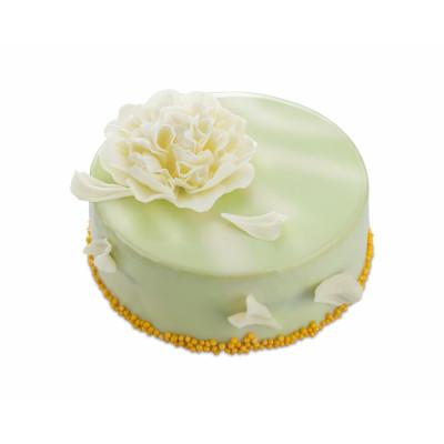 Торт «Фисташка – малина»